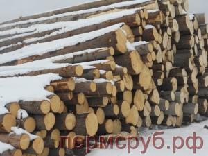 Штабель зимнего хвойного леса для компании ПермСруб